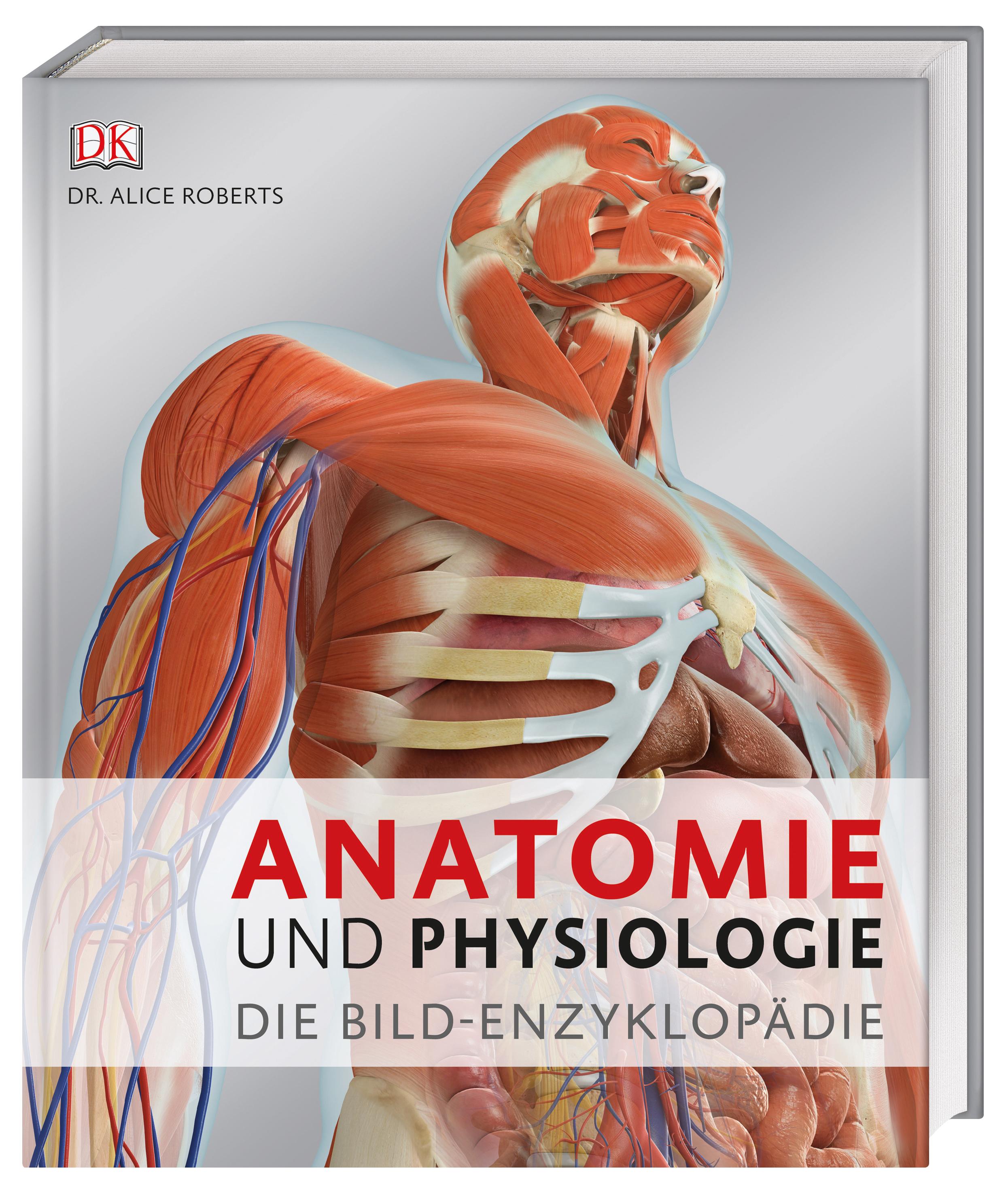 Schön Menschliche Anatomie Kapitel 1 Zeitgenössisch - Menschliche ...
