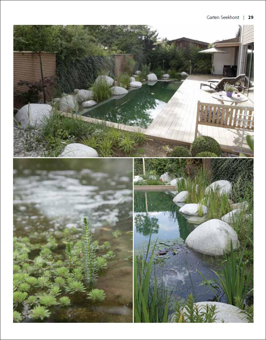 Schwimmteiche Und Pools Für Kleine Gärten Malerblatt Medienservice