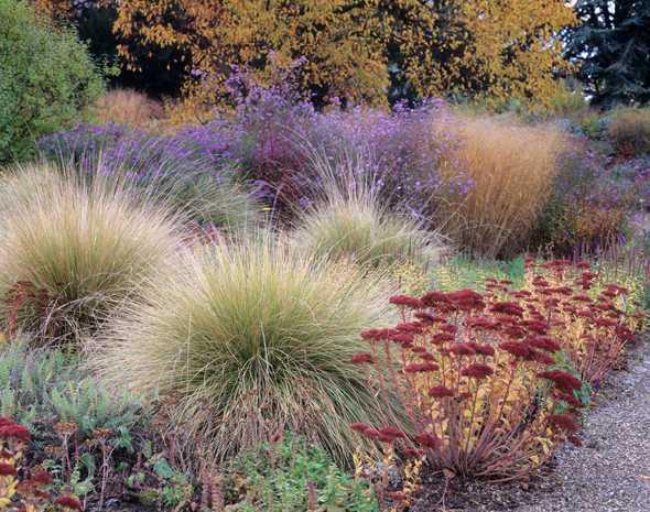 kiesgarten pflanzplan – reimplica, Garten ideen gestaltung